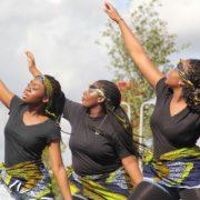 20 Registered Non-Profit Organisations for Nigerians in Gauteng
