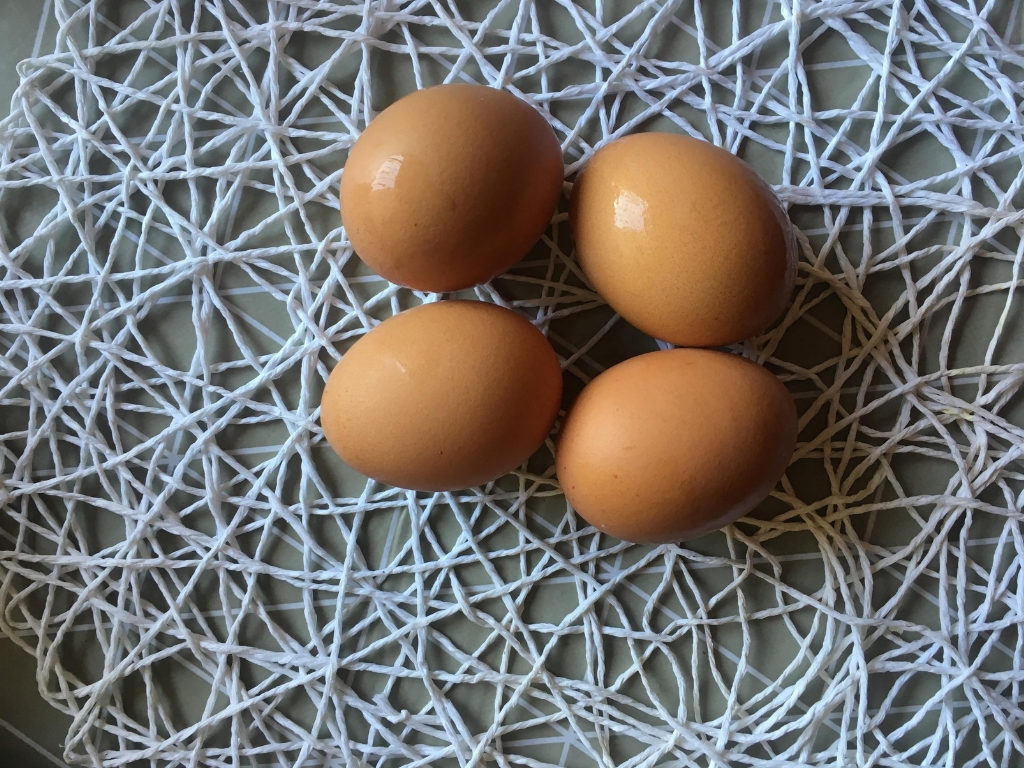 African eggs